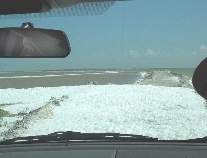 beach foam across road